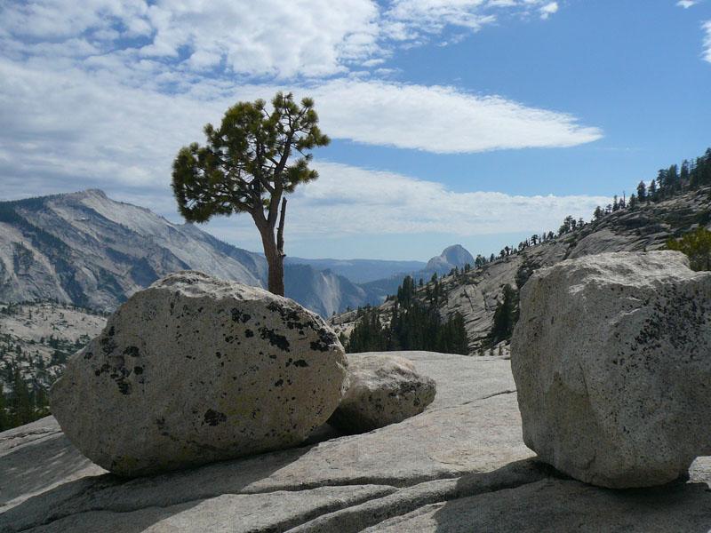 Pieno collegamento Campeggio Yosemite